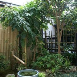 Most current Free Japanese Garden house Style Japanese gardens are traditional gardens that can cause miniature idealized landscapes, often in a p #smalljapanesegarden