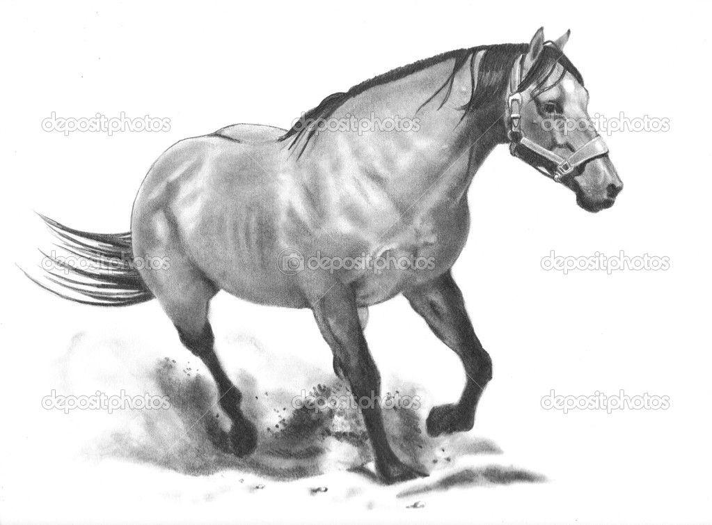 Disegnare gioielli a mano bing immagini professione for Disegni di cavalli a matita