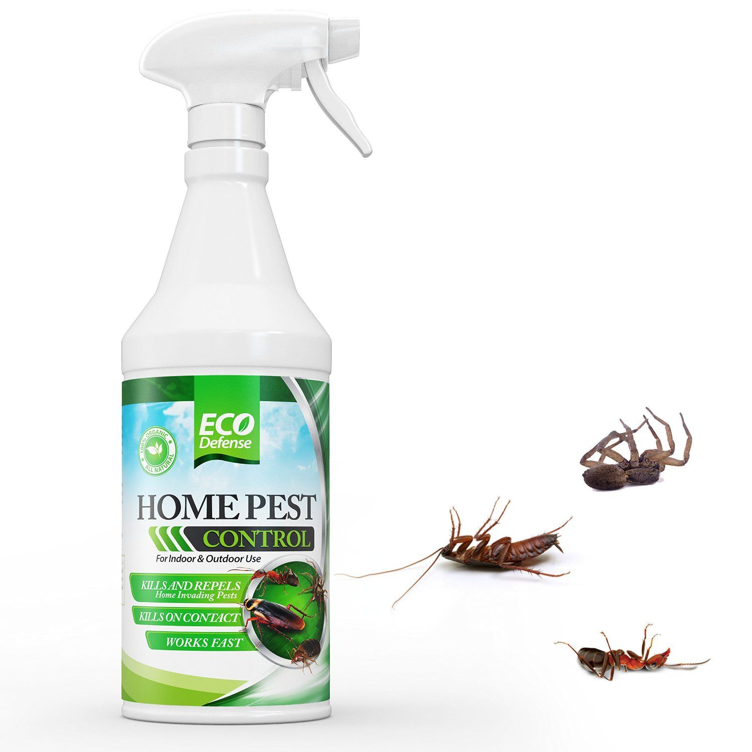 Eco Defense Organic Home Pest Control Spray Kills Repels Ants Roaches Spiders And Other Pests Guaranteed Natural Insect Child Pet Safe
