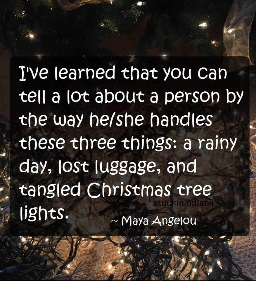 maya angelou quotes tangled christmas lights viewdulah co