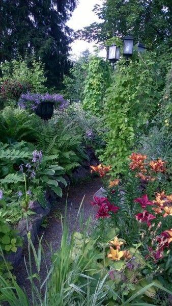 Avoimet puutarhat - Puutarhat