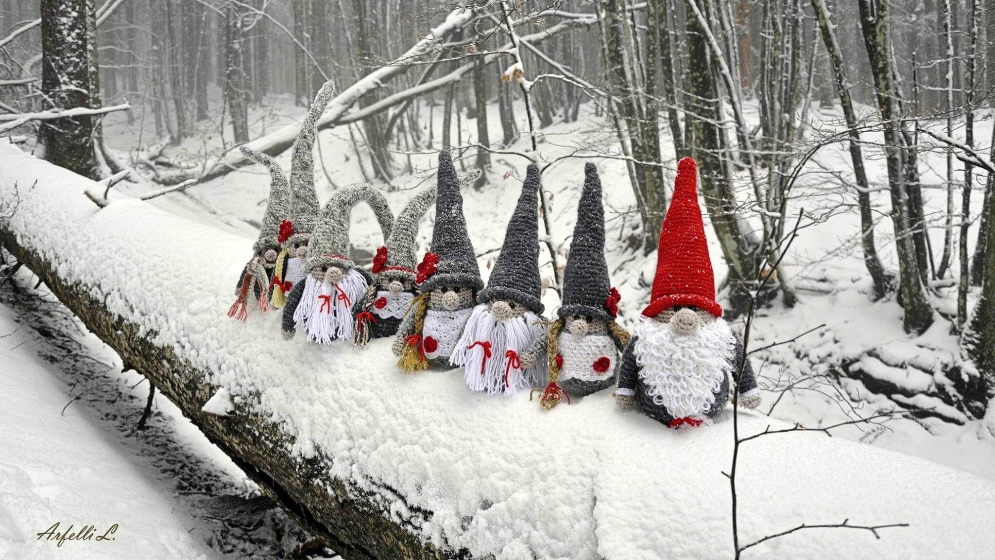 Gli Gnomi Di Bagno Di Romagna In Gita Sulla Neve A Campigna