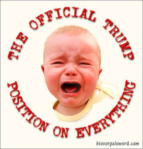 Image result for trump the whining crying baby