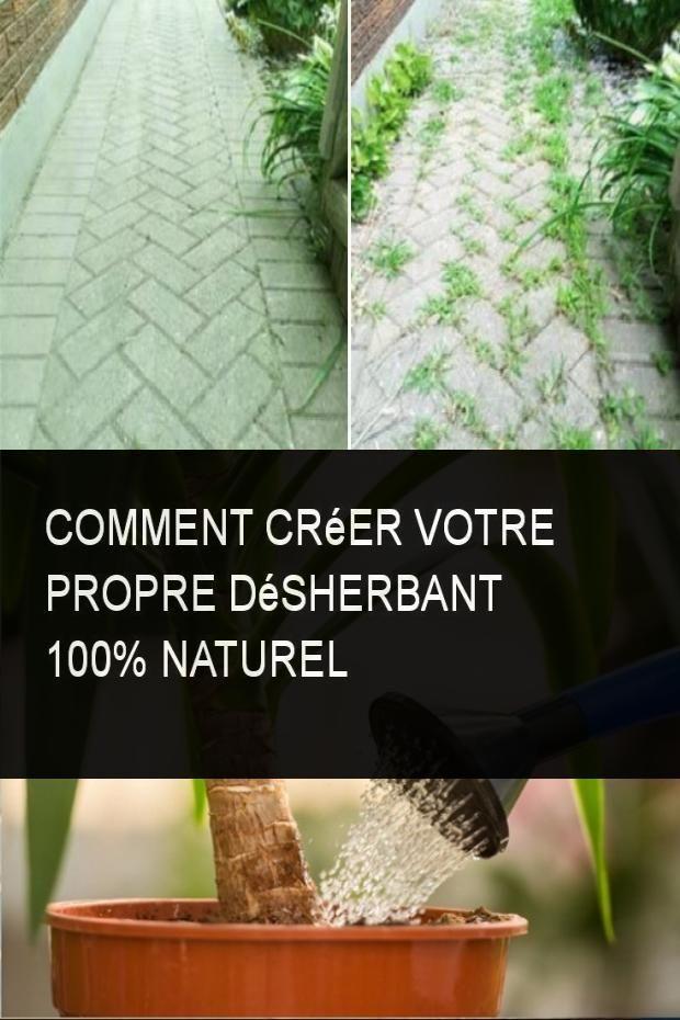 Comment Creer Votre Propre Desherbant 100 Naturel Astuce Jardin Desherbant Maison