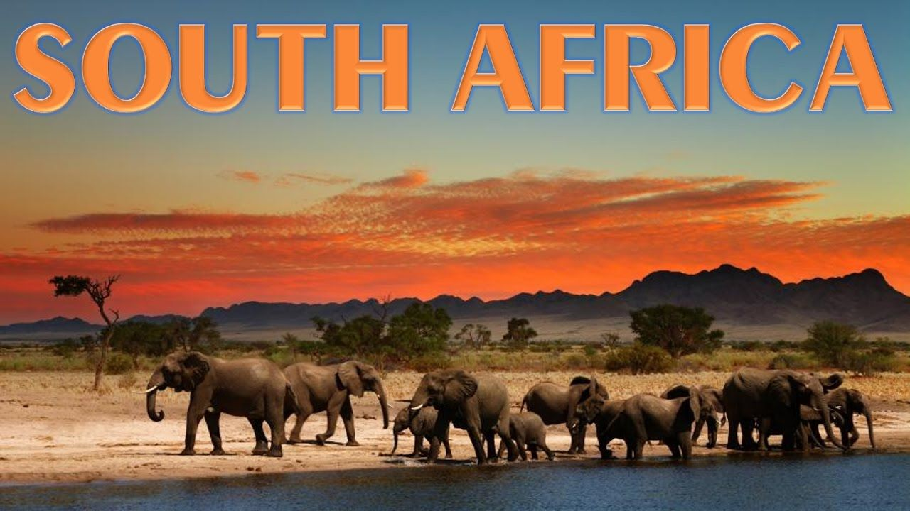 Best Places To Visit In South Africa Travel Pinterest - 10 best safaris in africa
