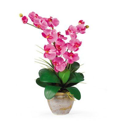 Nearly Natural Double Stem Phalaenopsis Silk Orchid Arrangement *** More info could be found at the image url.
