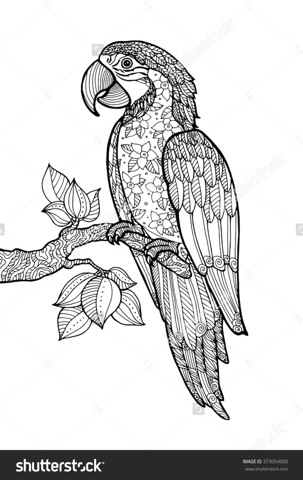 stock-vector-parrot-ara-macao-exotic-bird-with-floral-pattern ...
