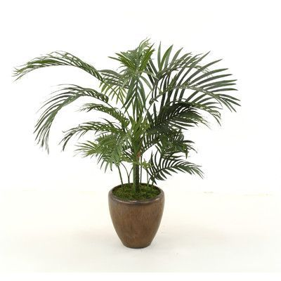 Distinctive Designs Palm Floor Plant in Planter