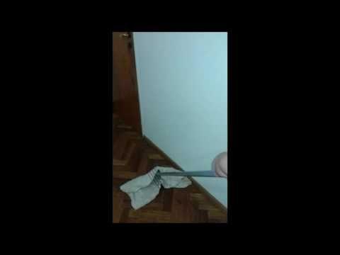 Trapea Tu Casa O Negocio Para Limpiar Brujerias, Envidias, Mala Suerte    YouTube