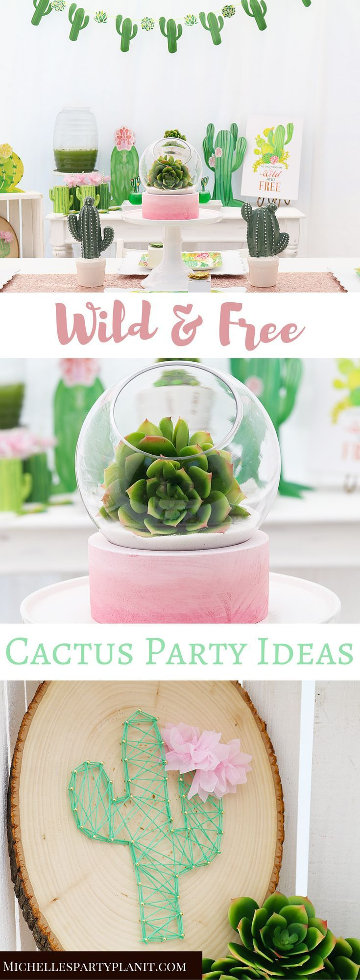Succulent Themed Party Ideas & Decorations is part of Cactus decor Party - Celebrate all that is Wild and Free with this Cactus Party by Michelle's Party PlanIt  Filled with simple yet impactful ideas for any celebration