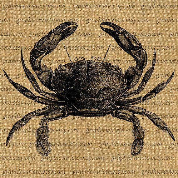 Crab Large Sea Life Beach Ocean Digital Image Download Transfer To Pillows Tote Tea Towels Burlap 0297