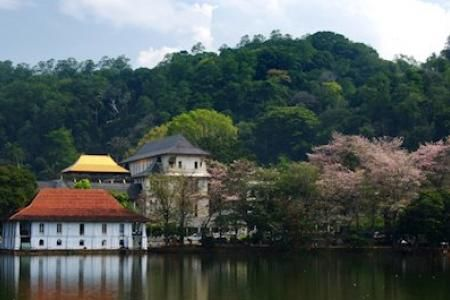 Time to #travel. Ever #wondered to have a #great #travel to #Kandy? #Enjoy #SriLanka