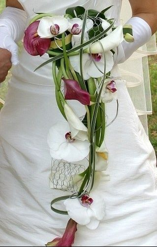 quel bouquet??photos avec essai.. | vie pratique, essais et bouquet