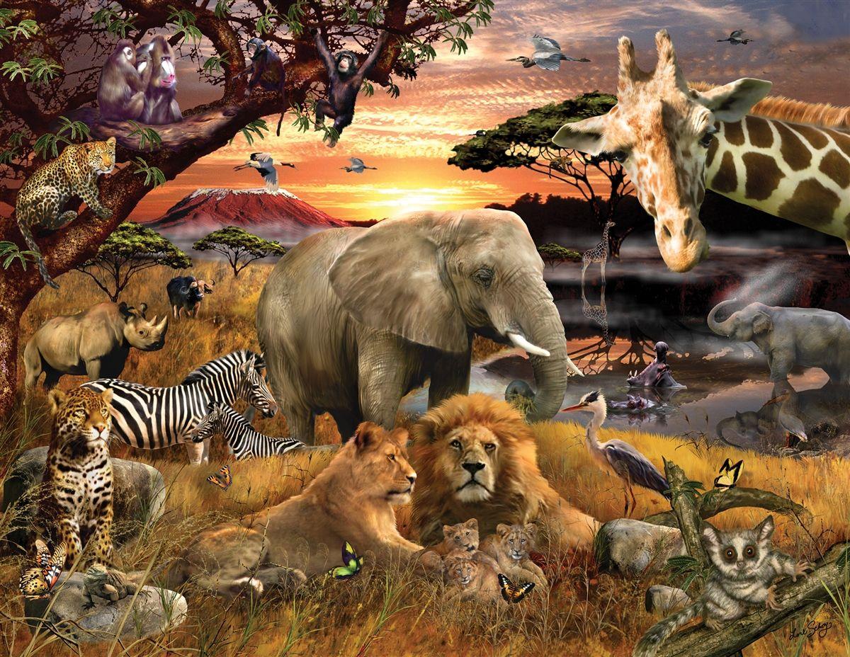 Wild Savanna 400 Piece Jigsaw Puzzle Jigsaw pics