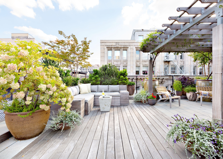 Landscape Gardening Design Software Free & Landscape ...