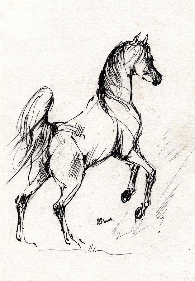 Эскизы картинки с лошадьми нас
