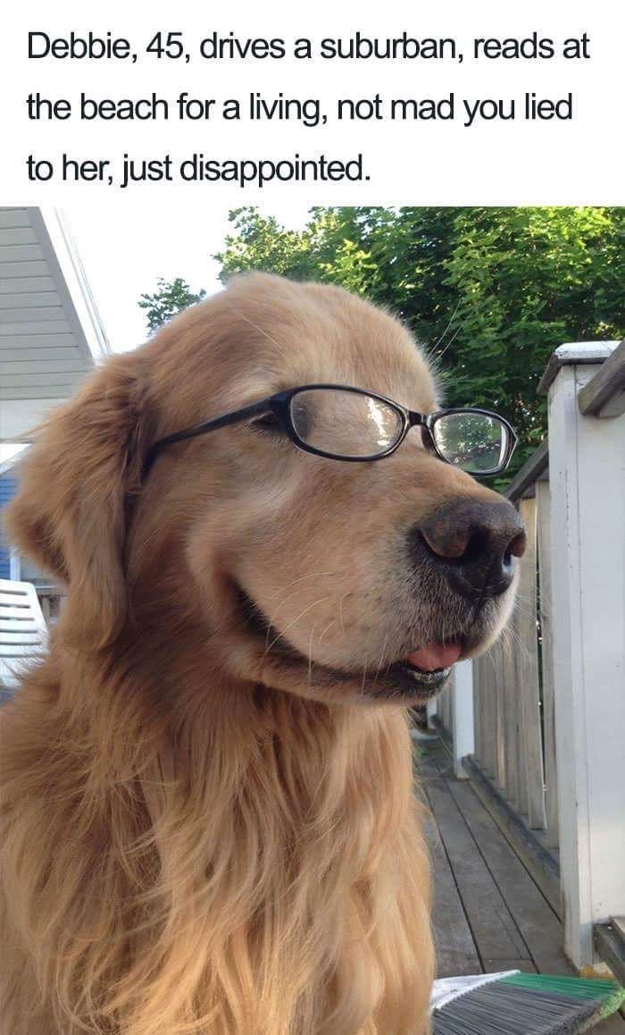 Pin by Tropical Life Food and Fun on I love Golden Retrievers