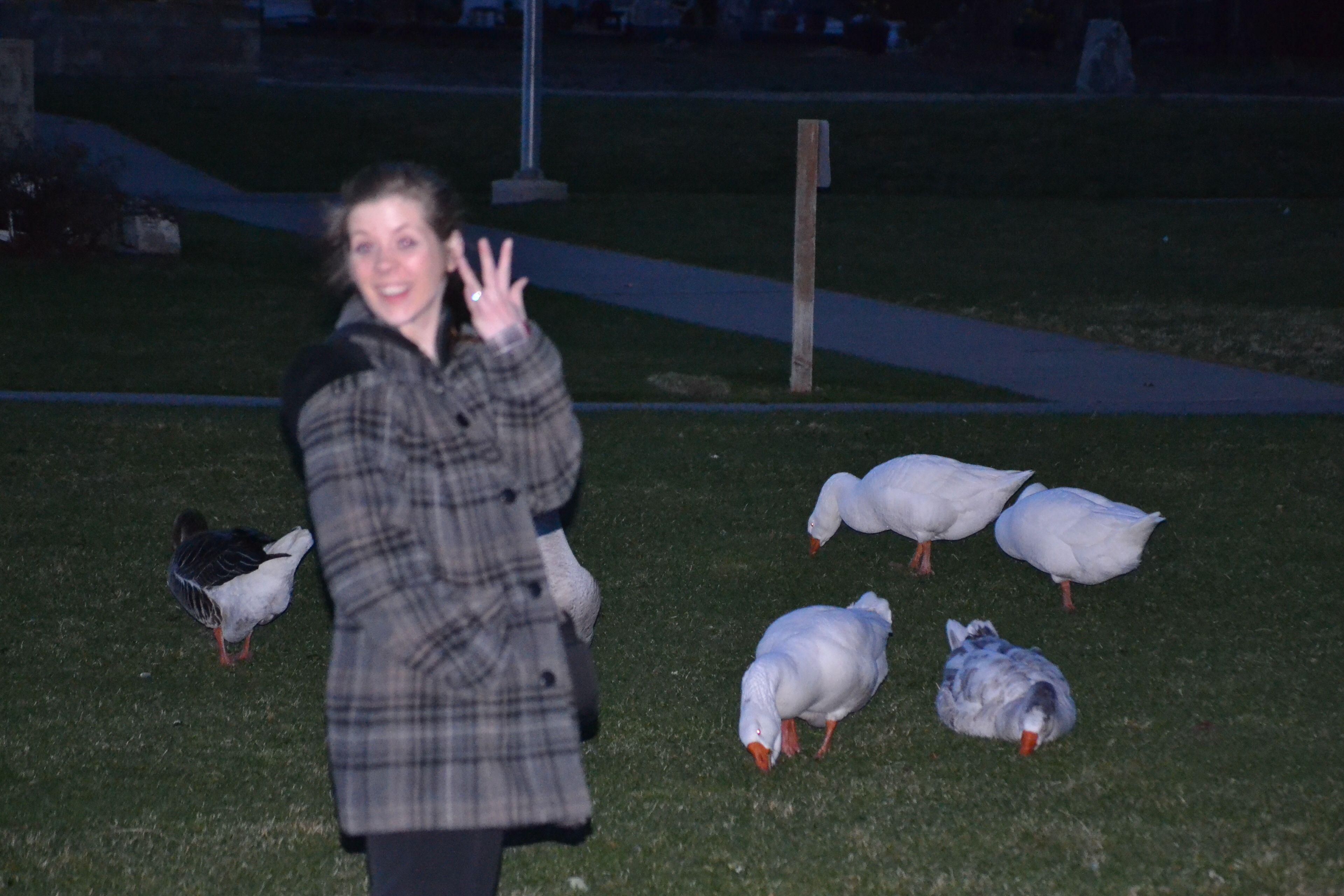 Meghan w/ geese