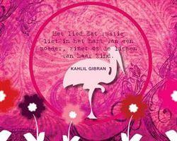 Hedendaags Gefeliciteerd | Happinez e-cards - Happinez (met afbeeldingen GN-51