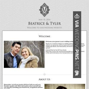 So Neat Destination Wedding Website Examples