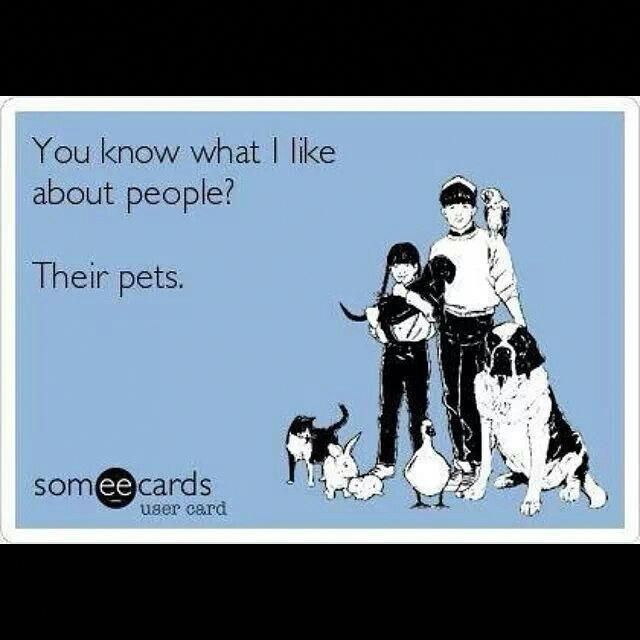Affordable Dog Boarding Near Me Dogswithoutborders Code 8580041468 Dog Quotes I Love Dogs Pets