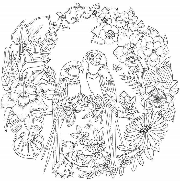 Pin de Barbara Brantley en coloring pages | Pinterest | Mandalas y ...