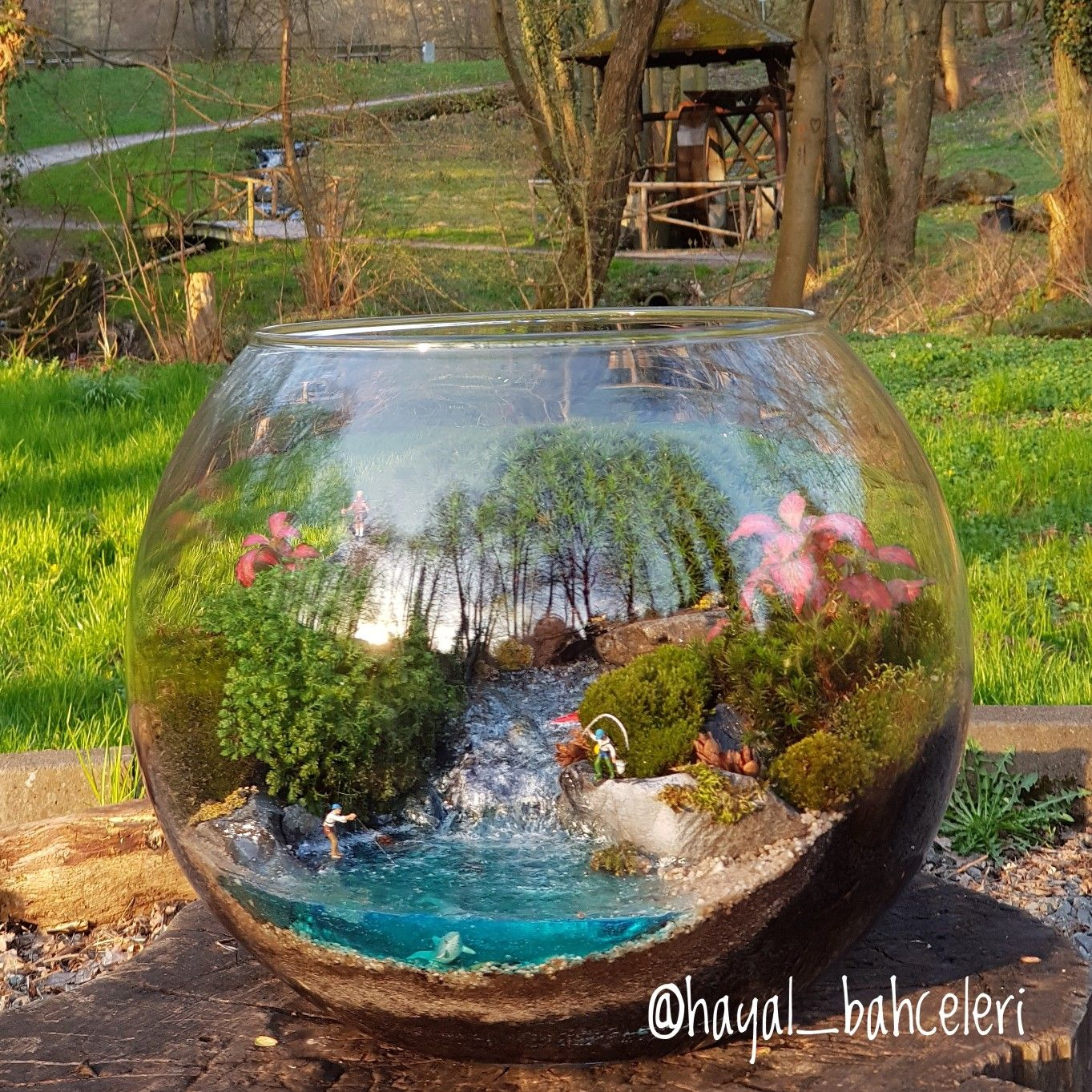 Best of terrarium cam süsleme sanatı pinterest terrarium