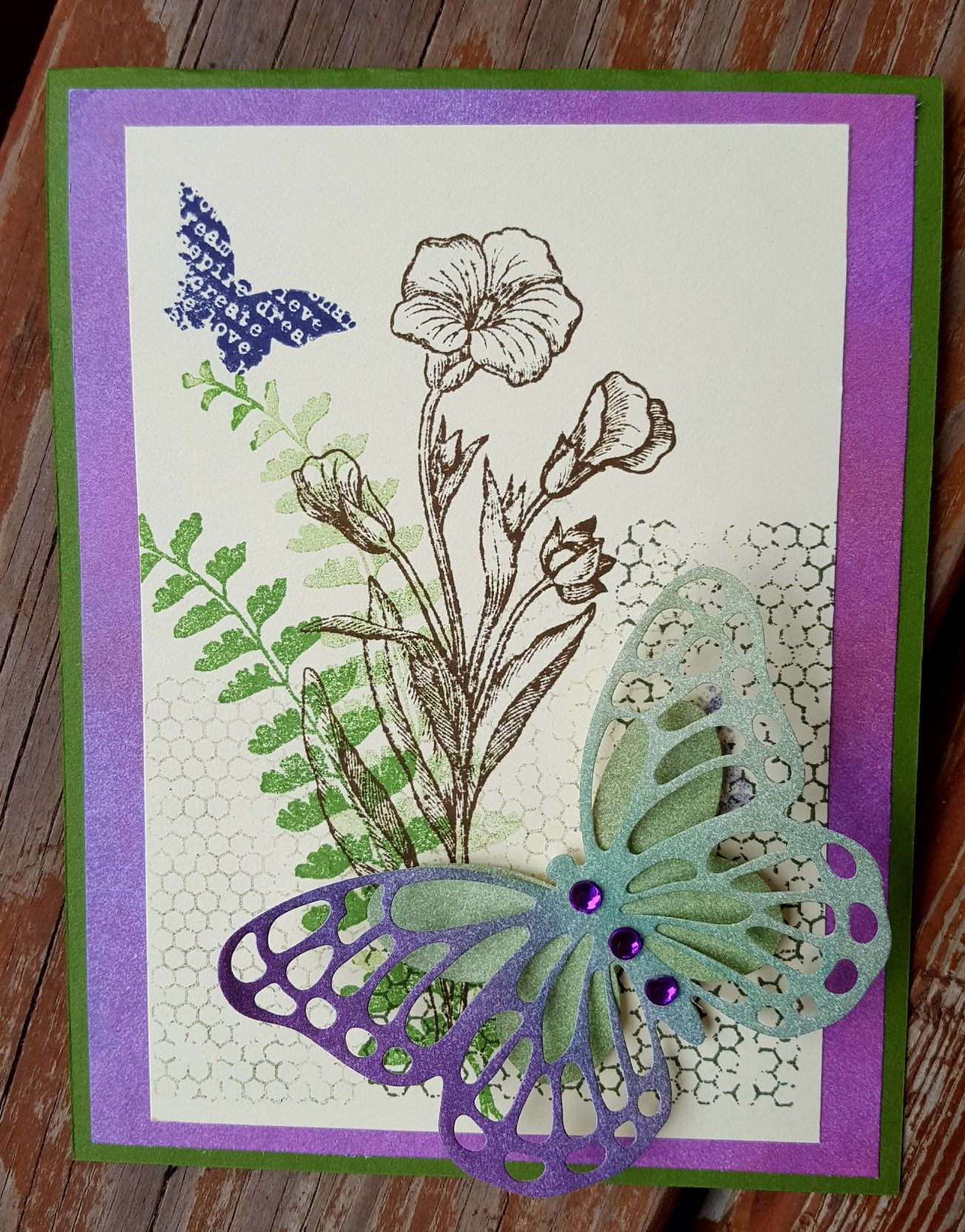 stampin up butterfly basics  butterfly cards cards