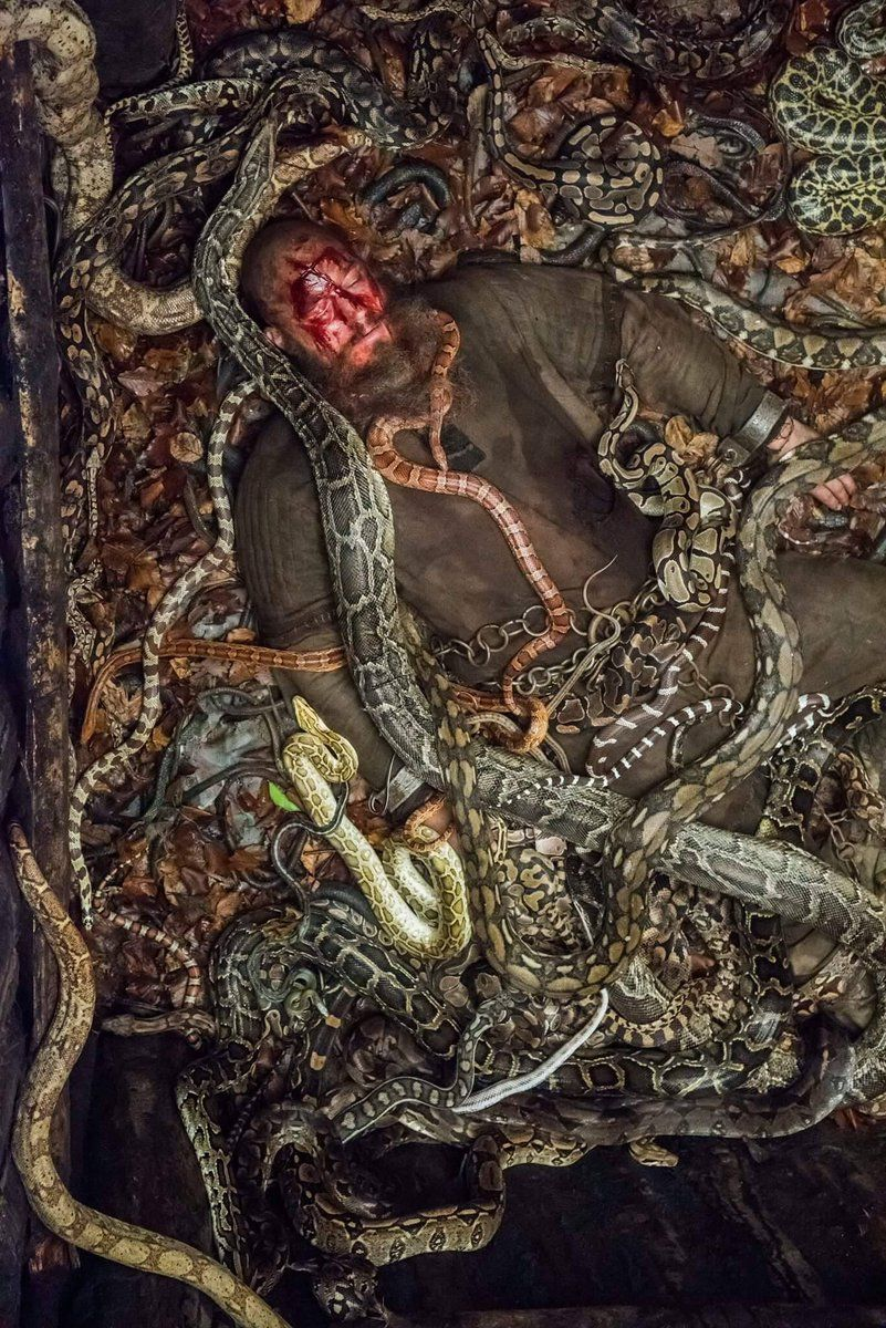 Rise of the serpent men
