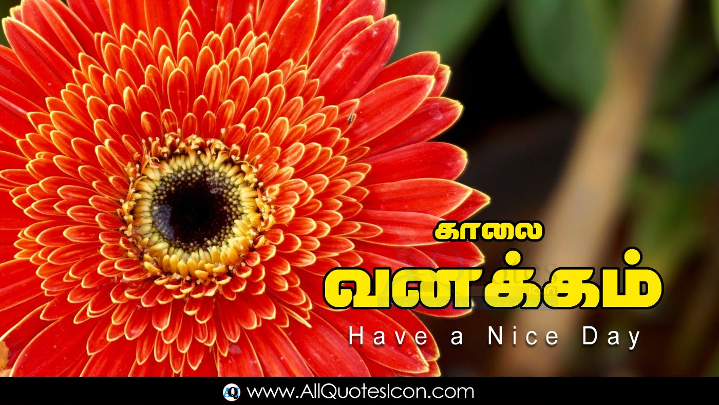 Best Fathers Day Wishes Images Tamil Quotes Messages