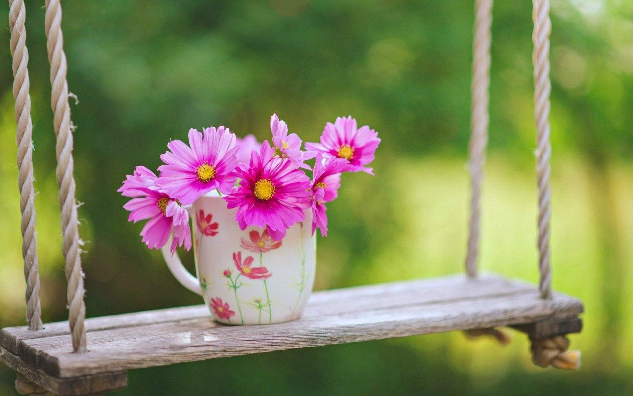 Pinterest Flowers: Ideas About Beautiful Flowers Wallpapers On Pinterest Pink