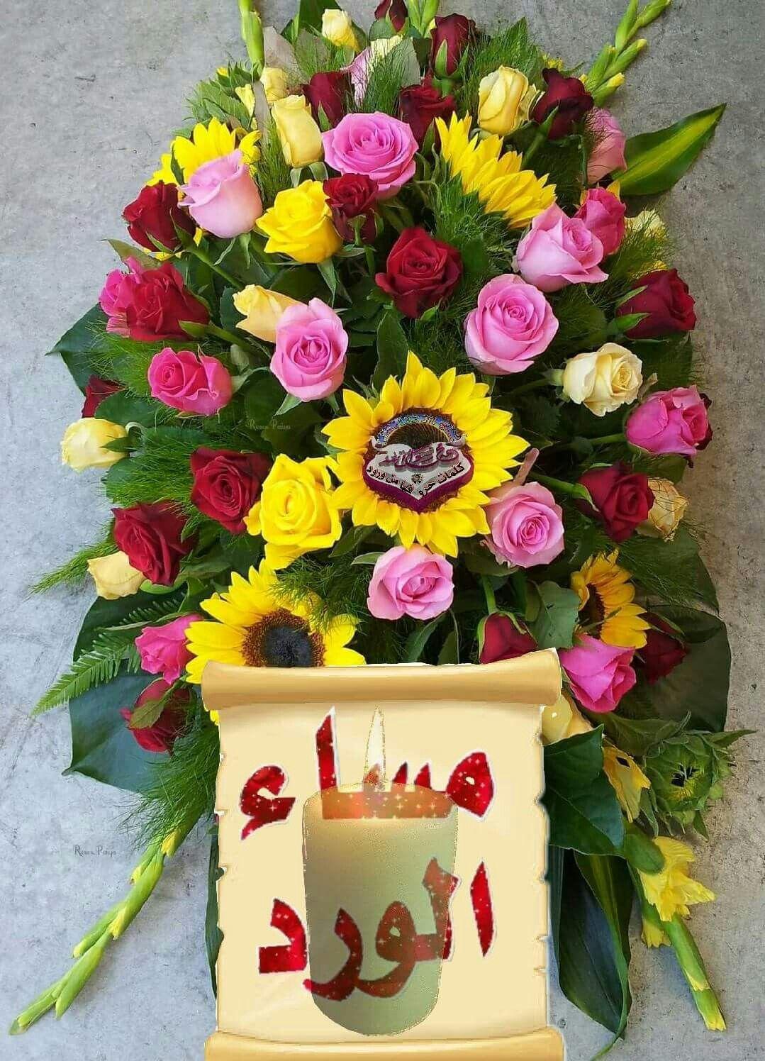 good evening pinterest flowers and rose beautiful flowers roses islam sweetie belle pretty flowers rose izmirmasajfo