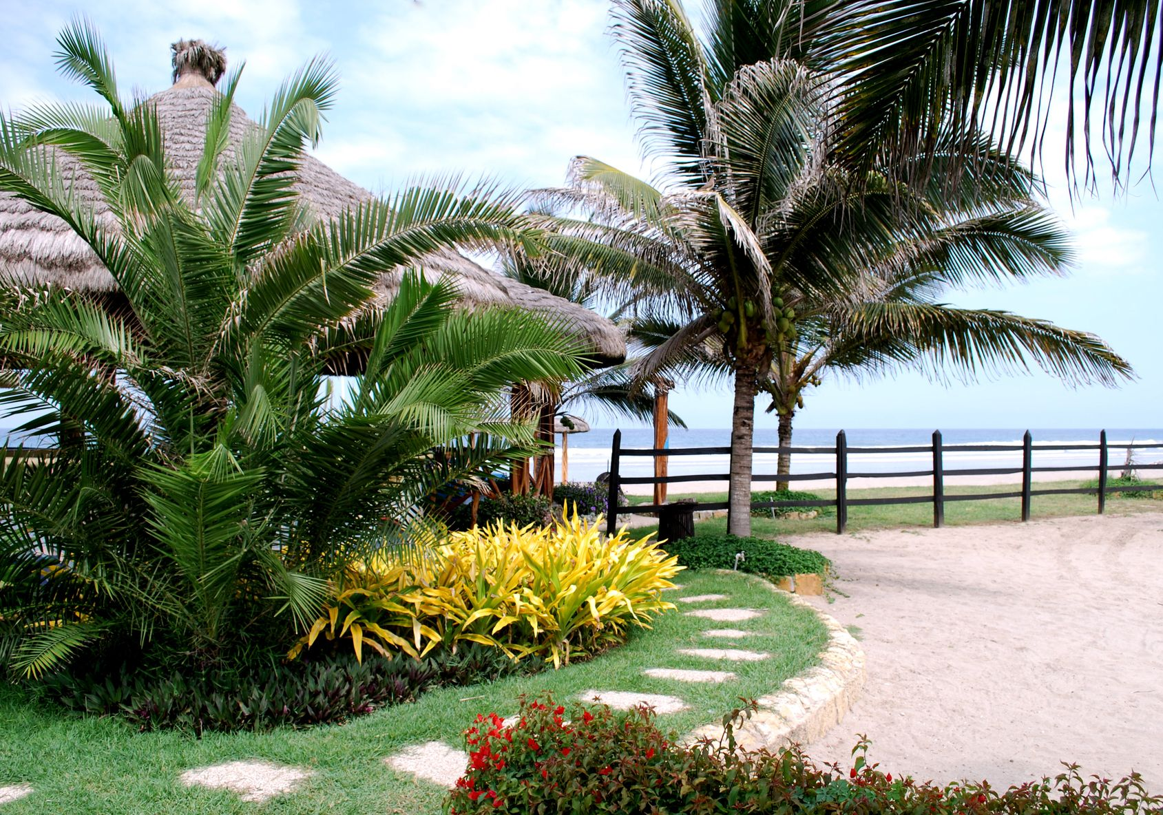 Tropical landscape designs ribbon of grass ideas for Beach house landscaping plants