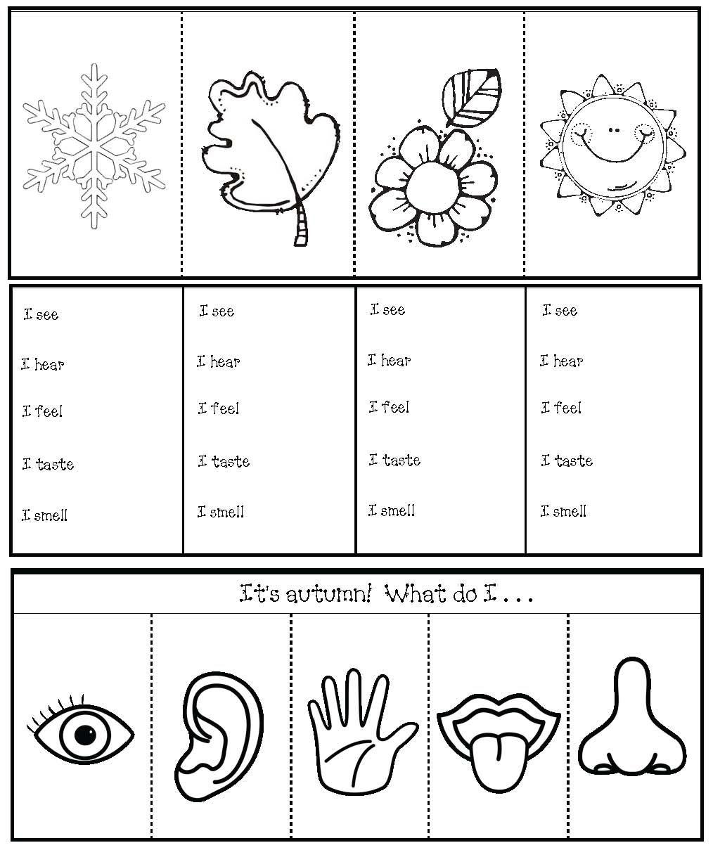 seasons senses activities pr rodoveda senses activities senses preschool a 5 senses. Black Bedroom Furniture Sets. Home Design Ideas