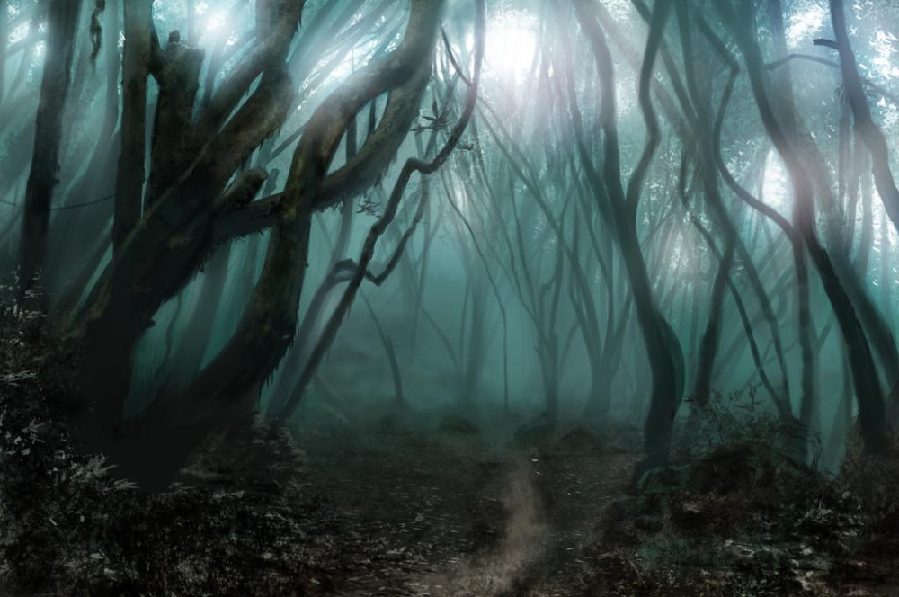 Spooky Forest Study By Jrcoffroniii On Deviantart In 2020 Spooky Background Haunted Forest Scary Photography