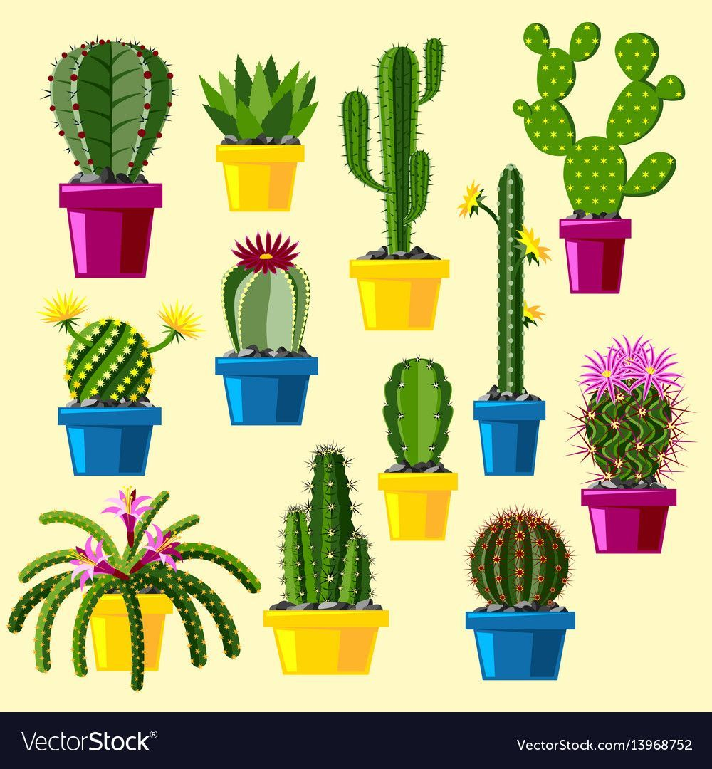 Cactus flat style nature desert flower green cartoon drawing graphic mexican suc... -  Cactus flat style nature desert flower green cartoon drawing graphic mexican succulent and tropical - #cactus #Cartoon #Desert #drawing #flat #Flower #graphic #green #mexican #nature #style #suc
