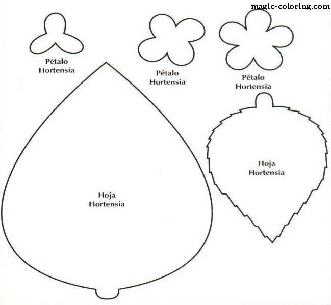 MAGIC-COLORING Hortensia (Hydrangea) flower template flower - flower template