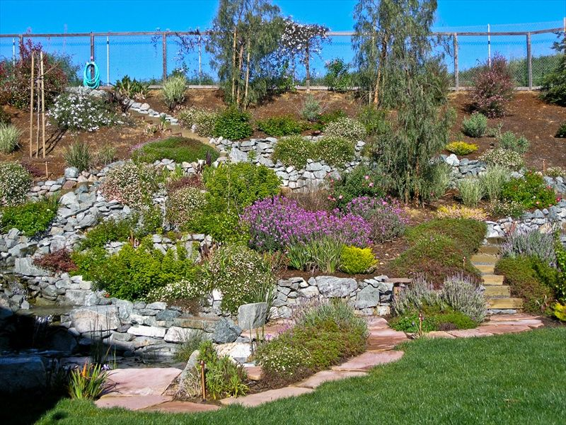 Hillside landscape design gardening projects pinterest for Low maintenance sloping garden ideas