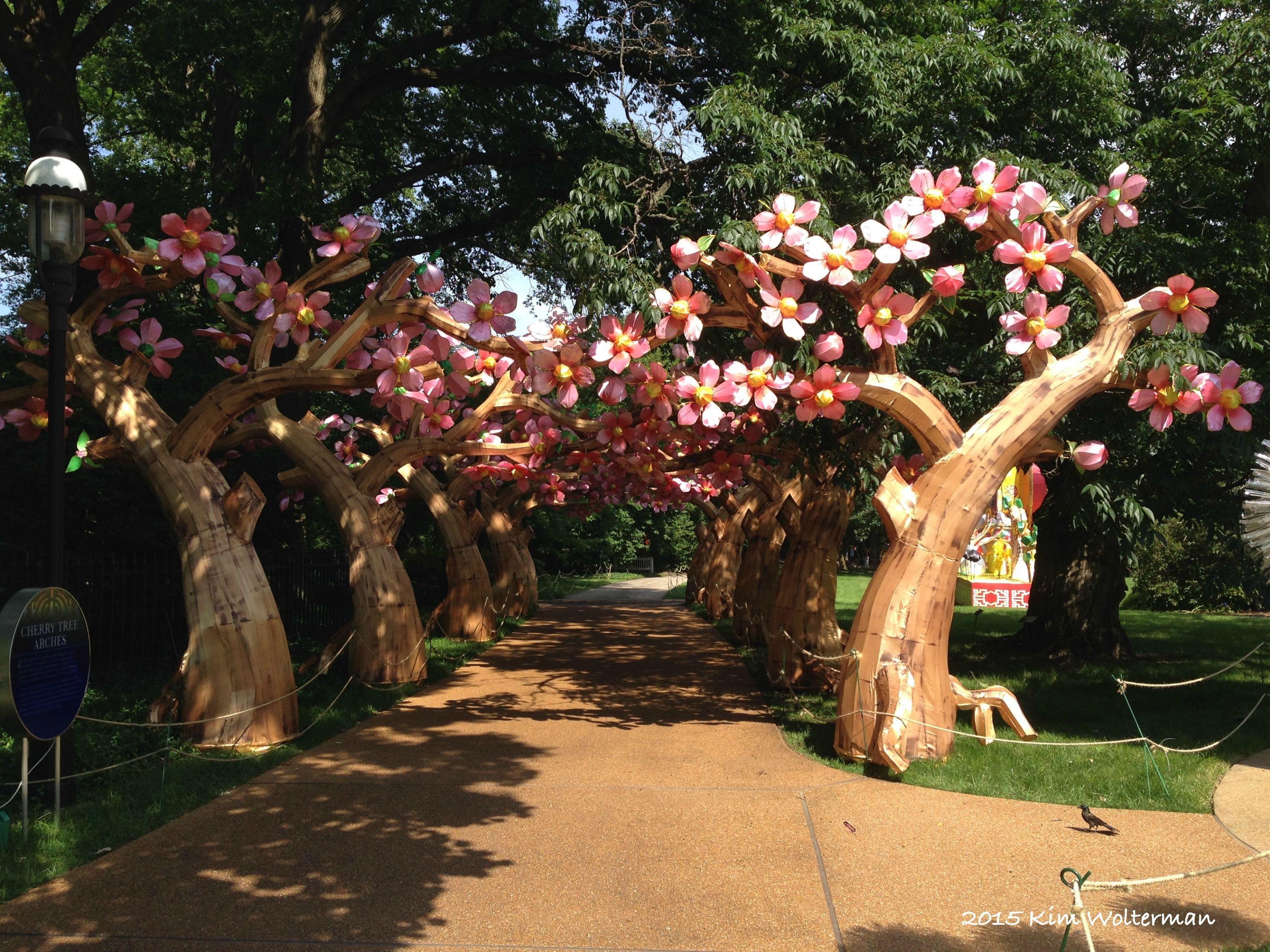 Cherry Tree Arches lantern at the Missouri Botanical Garden Lantern ...