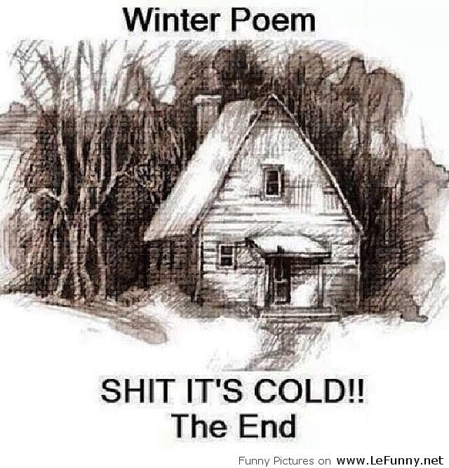 85d055ec3eda4c3bb9c9e8843c5a0f8a winter poem funny meme memes pinterest meme, humor and memes