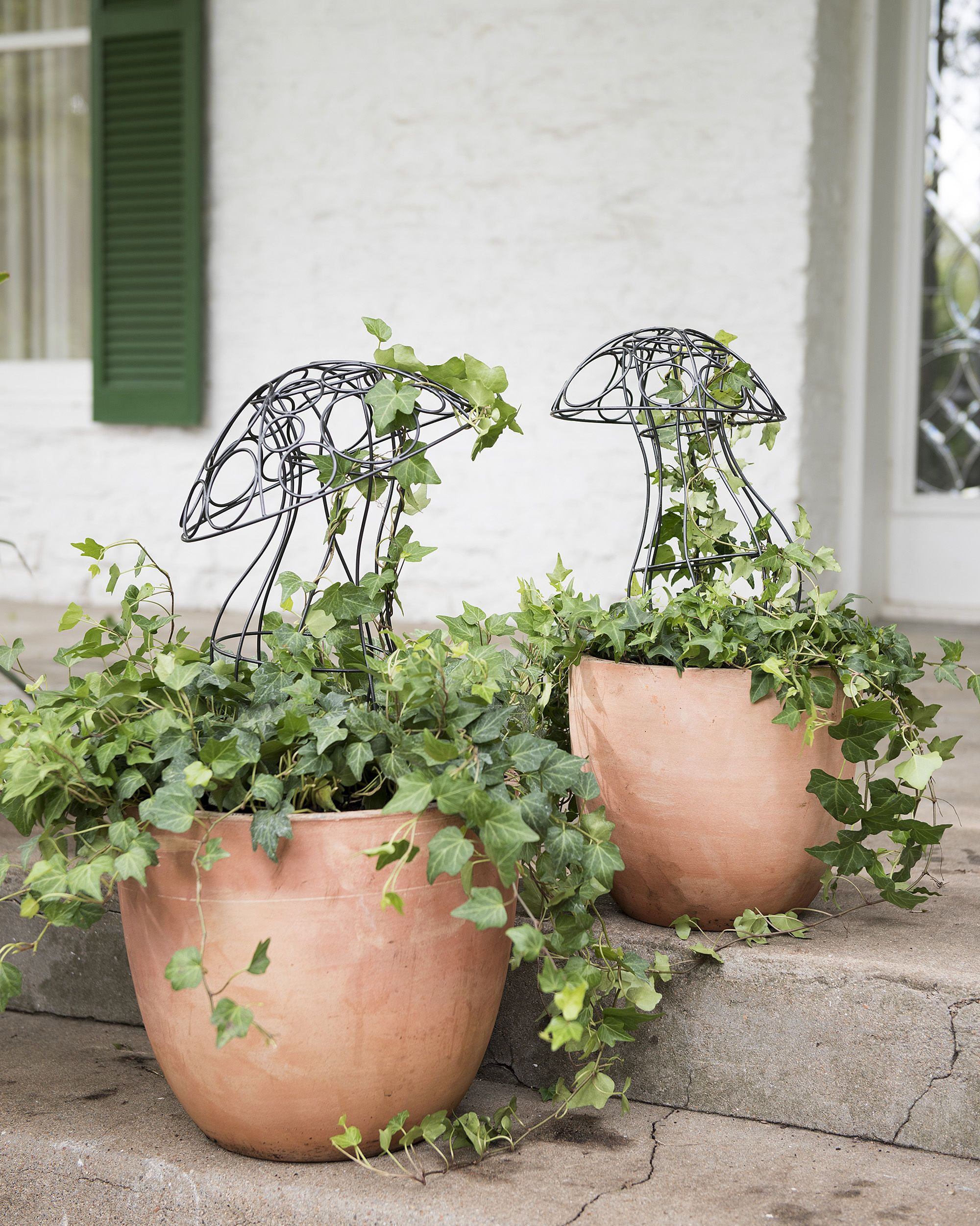 topiary wire shapes