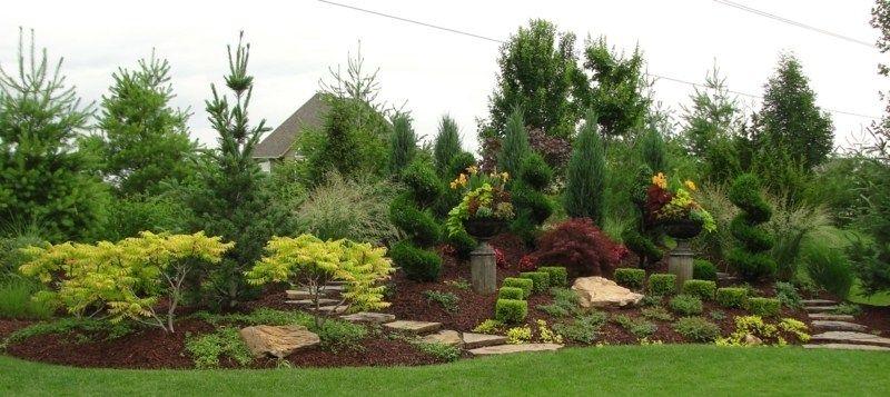 Legen Sie einen Garten aus verschiedenen Pflanzen am Hang an ...