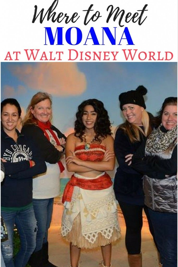 Where to meet moana at disney world best of lola lambchops on where and how to meet moana at walt disney world find moana at disneys hollywood studios one of the best disney character meet and greets ever m4hsunfo