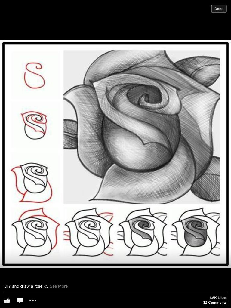 How to draw a rose :D