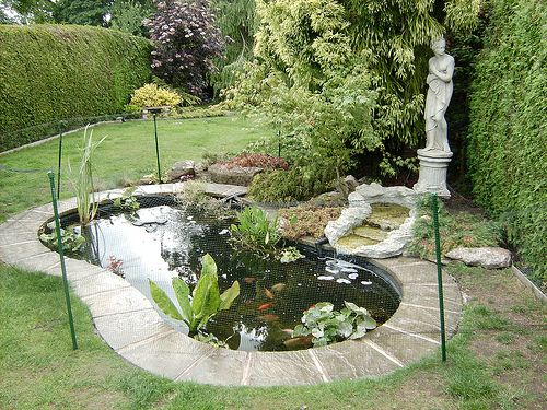 Concrete fish ponds construction use around the edge for Garden pond edging