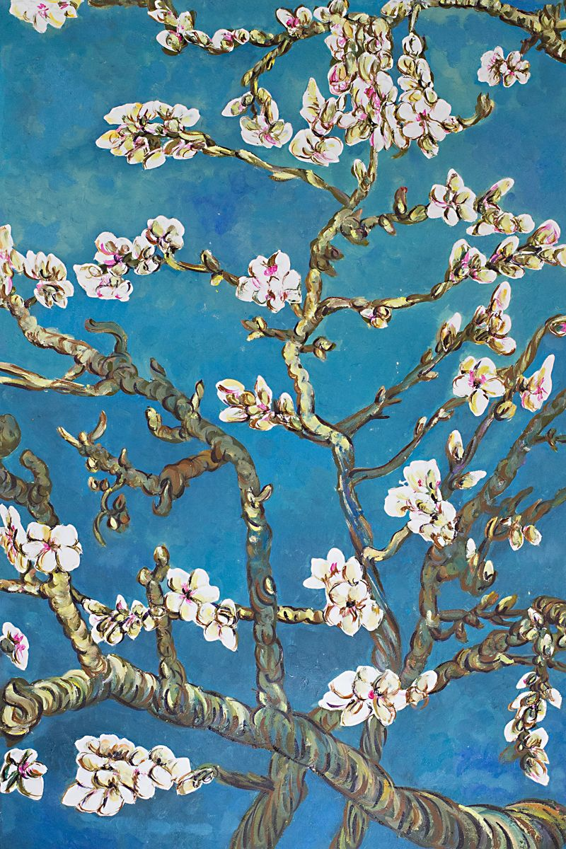 Almond Tree In Blossom By Van Gogh Artist Reproduction At Overstockart Com In 2021 Cherry Blossom Painting Van Gogh Famous Paintings Blossoms Art