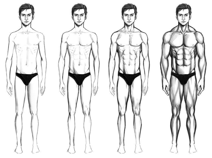Masculino Tipos de cuerpo por chaosbringer99 | {05} |Dr∧Wing ...