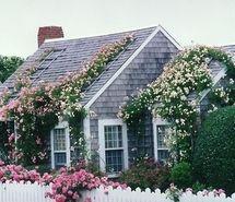 Looks so cute !  Gotta be Nantucket!
