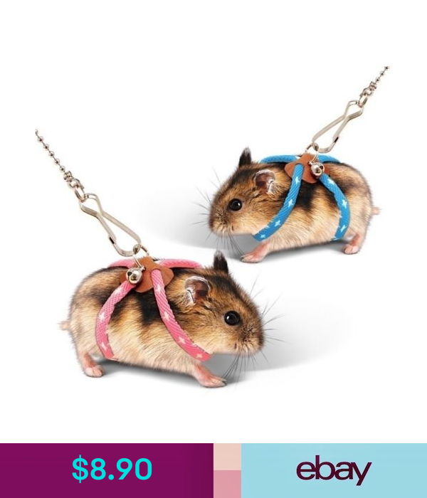 Other Pet Supplies Pet Rat Mouse Hamster Ferret Adjustable Harness Lead Leash Collar Pink Blue Ebay Animales Bebe Bonitos Hamsters Jaulas Animales Chistosos