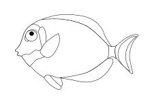 Korallenfisch Mosaik Fisch